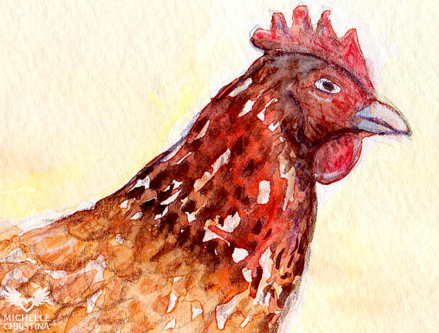 hen watercolor painting by NH artist michelle christina