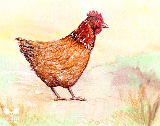 chicken watercolor painting by NH artist michelle christina